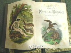 Cassell's Popular Natural History Complete 4 Volume Set With Hand Colored Plates
