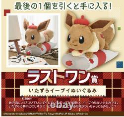 Pre Ichiban Kuji Pokemon Eevee - Art Coloré Ensemble Complet 24 Type Japon F/s